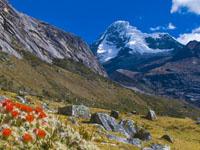 Peru-Trek