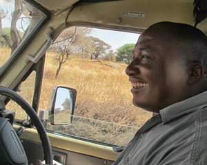 safari-drive-guide-in-serengeti-national-park-with-mountain-gurus